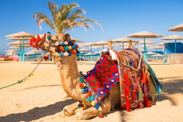 Camila odihnindu-se pe o plaja din Hurghada, Egipt