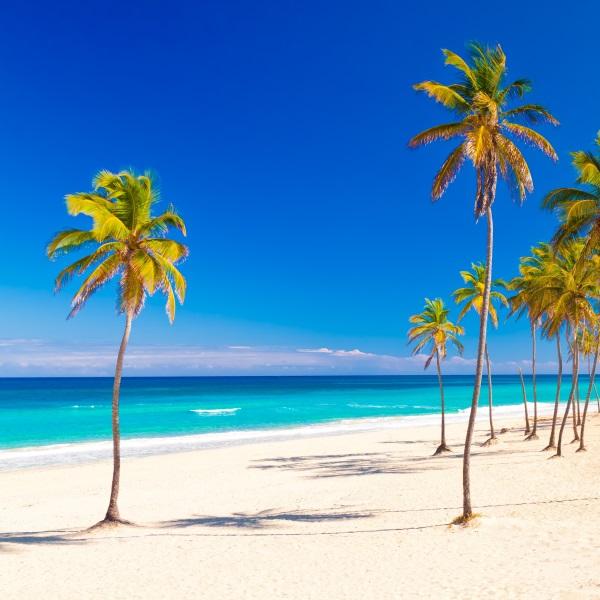 Plaja cu palmieri, Varadero, Cuba