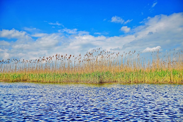 Super blue sky Danube Delta Landscape