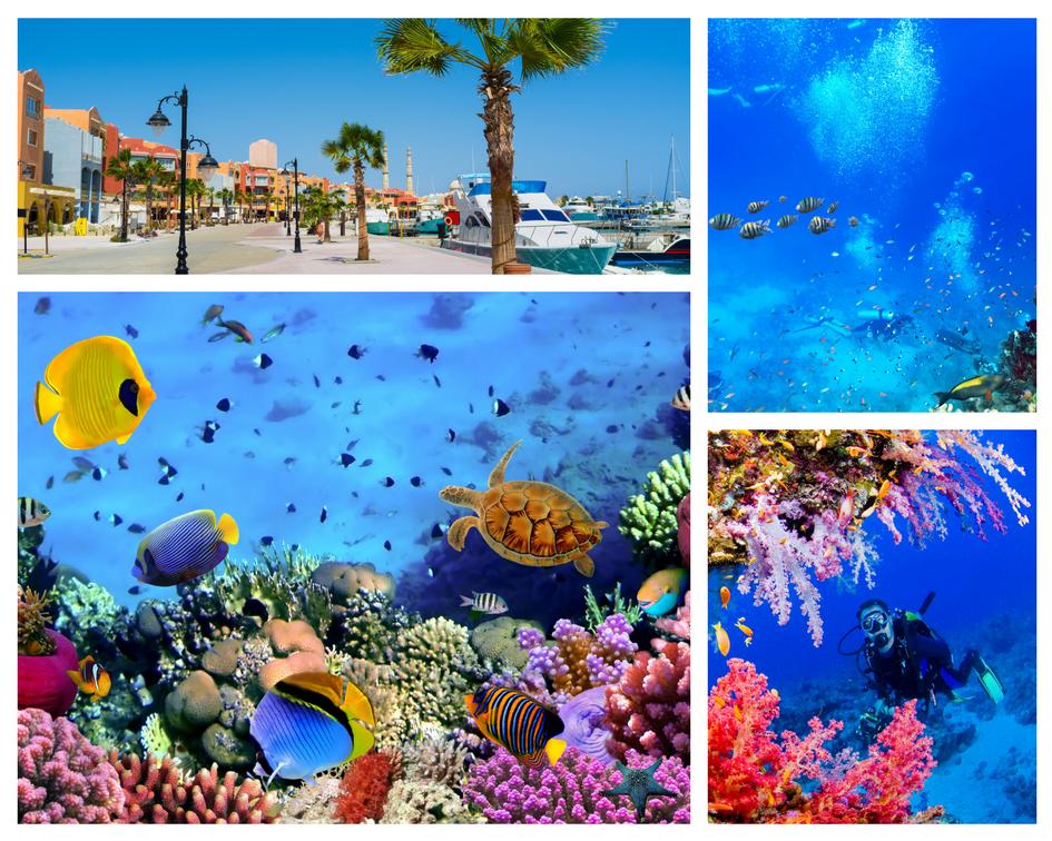 hurghada corali
